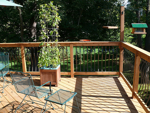 deck-and-railing